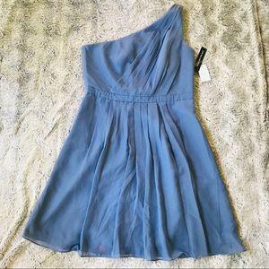 Weddington Way dusty blue Georgia dress, plus size